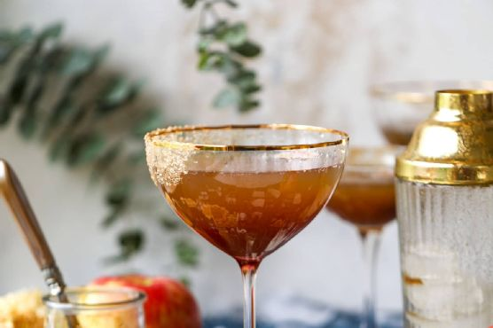 Autumn Apple Bourbon Fizz