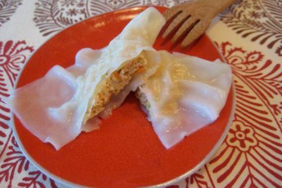 Asian chicken dumpling