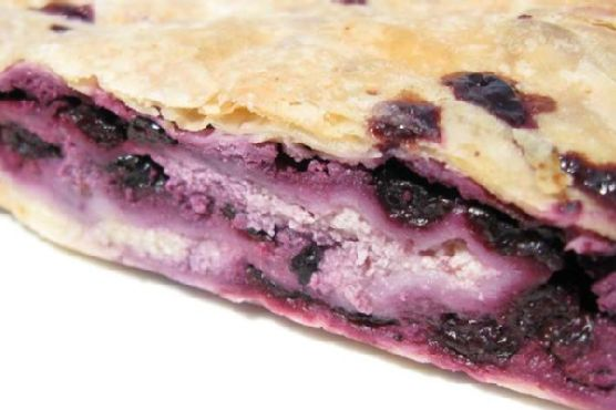 Blueberry and Cottage Cheese Strudel