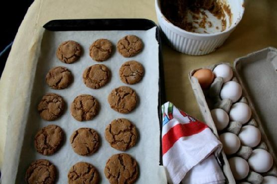 Ginger Molasses Rounds