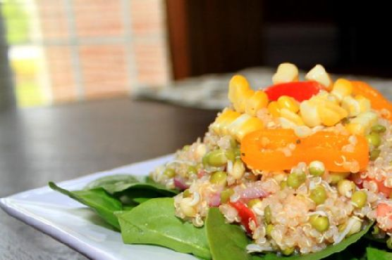 Mung Bean Sprout and Quinoa Salad